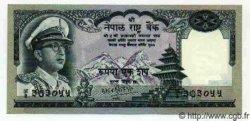 100 Rupees NÉPAL  1972 P.19 NEUF