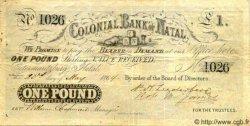 1 Pound AFRIQUE DU SUD  1864 PS.431 pr.TTB