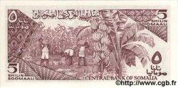5 Shillings SOMALIE RÉPUBLIQUE DÉMOCRATIQUE  1986 P.31b NEUF