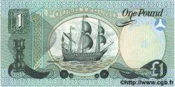 1 Pound IRLANDE DU NORD  1979 P.247b