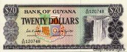 20 Dollars GUYANA  1989 P.24d