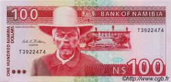 100 Dollars NAMIBIE  1993 P.03a NEUF