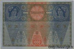 1000 Kronen AUTRICHE  1919 P.060 SUP