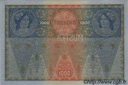 1000 Kronen AUTRICHE  1919 P.060s SPL