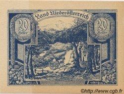 20 Heller AUTRICHE  1920 PS.113a NEUF