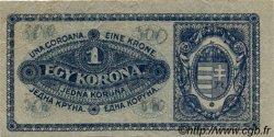 1 Korona HONGRIE  1920 P.057 TB