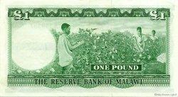1 Pound MALAWI  1964 P.03 SPL+