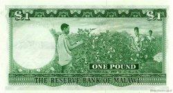 1 Pound MALAWI  1964 P.03 NEUF