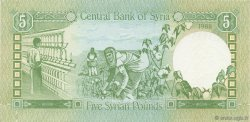 5 Pounds SYRIE  1988 P.100d NEUF