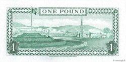1 Pound ÎLE DE MAN  1983 P.38a NEUF