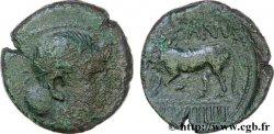 GALLIA BELGICA - REMI (Area of Reims) Bronze GERMANVS INDVTILLI au taureau (Quadrans) VF/VF