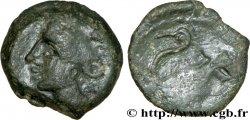 ARVERNES (Région de Clermont-Ferrand) Bronze IIPOS à l'échassier