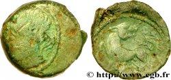 GALLIA - CARNUTES (Area of the Beauce) Bronze PIXTILOS classe II à la louve et au lézard