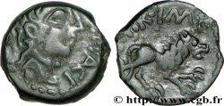 REMI / CARNUTES, Unspecified Bronze AOIIDIACI / A.HIR.IMP au lion
