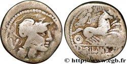 RAURACI - RAURAQUES Denier  imitée de la République romaine