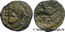 GALLIA - CARNUTES (Area of the Beauce) Bronze TOVTOBOCIO ATEPILOS