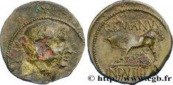 RÈMES (Région de Reims) Bronze GERMANVS INDVTILLI au taureau (Quadrans)