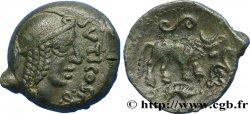 VELIOCASSES (Regione di Normandia) Bronze SVTICOS, classe I au taureau SPL/q.SPL