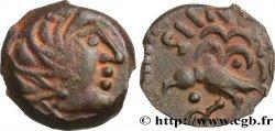 SENONES (Area of Sens) Bronze GIAMILOS / SIINV à l'oiseau