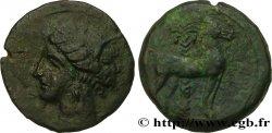 ZEUGITANIA - CARTHAGE Unité de bronze XF