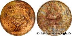 SECOND EMPIRE Médaille du berceau du prince impérial Louis-Napoléon (1856-1879)