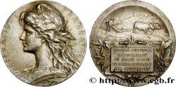III REPUBLIC Médaille de Comice Agricole
