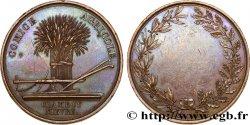 LUDWIG PHILIPP I Médaille de Comice Agricole fVZ