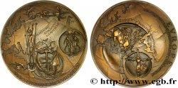 V REPUBLIC Médaille de promotion de l'Europe AU