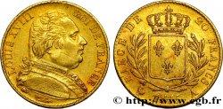 20 francs or Louis XVIII, buste habillé 1815 Paris F.517/10 XF45