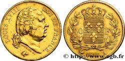 40 francs or Louis XVIII 1817 Paris F.542/6 TTB45