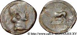 TREVIRI (Region die Trier) Bronze GERMANVS INDVTILLI au taureau (Quadrans) SS