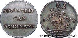 """SURINAM Duit de la """"Societeit Van Suriname"""", variété à l'herbe courte 1764 Enkhuizen"""