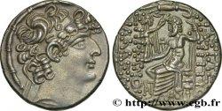 SYRIA - ROMAN PROVINCE - QUINTUS CAECILIUS Tétradrachme syro-phénicien