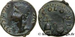 HISPANIA - BAETICA - COLONIA PATRICIA - AUGUSTE Semis ou quadrans