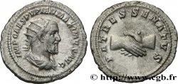 YAVRU Antoninien