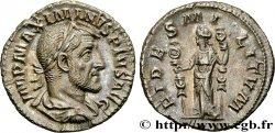 MAXIMINUS I İnkar