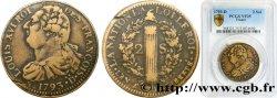 LOUIS XVI 2 sols dit au faisceau, type FRANÇOIS 1793 Riorges ou Dijon