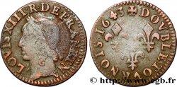 LOUIS XIII Double tournois, type de Warin 1643 s.l.